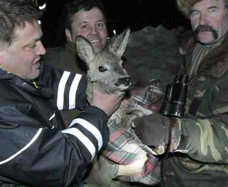 Polish firefighters hold deer rescued from ice floe, Baltic Sea, Jan 4, 2011/Pawel Smaruj, AP, apnews.excite.com