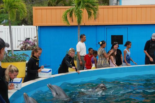 President Obama and his daughters at Sea Life Park, Oahu/Sea Life Park, San Francisco Chronicle, Feb 15, 09