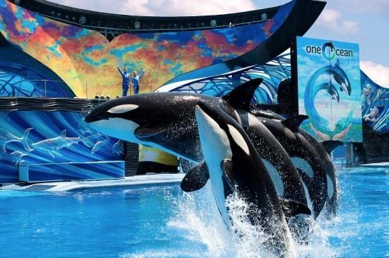 "SeaWorld premieres ""One Ocean,"" SeaWorld Orlando, April 22, 2011/InsideTheMagic"