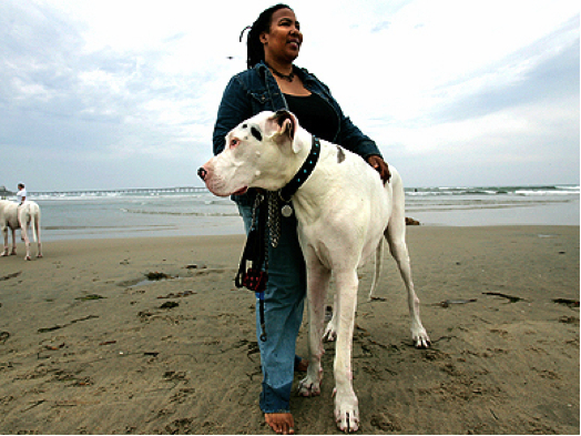 Titan and owner Diana Taylor, San Diego, CA, undated/DogoNews, Nov 16, 09