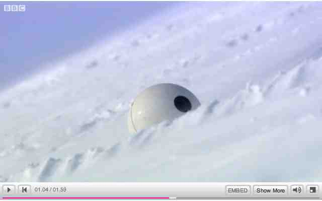 """Snowball Cam in the snow, image from""""Polar Bear: Spy on the Ice""""/BBC One, youtube.com"""