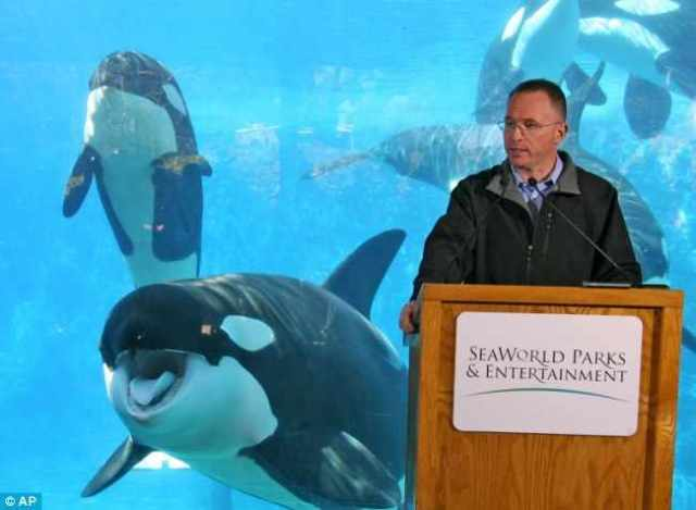 SeaWorld President & CEO Jim Atchison addresses reporters at press conference, Feb 26 2010/AP, MailOnline, dailymail.co.uk