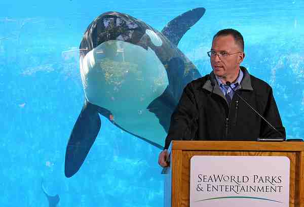 SeaWorld CEO Jim Atchison speaks at a press conference with unidentified orca in background two days after Dawn Brancheau's death, SeaWorld Orlando, Feb 26 2010/Red Huber, Orlando Sentinel, orlandosentinel.com