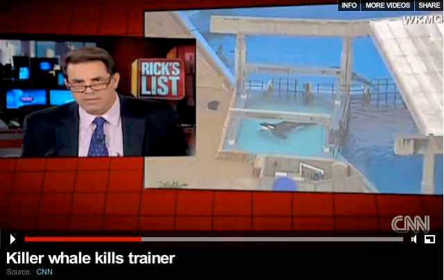 "Rick Sanchez, then host of of ""Rick's List,"" reports breaking news of Tilikum's attack, Feb 24 2010/cnn.com"
