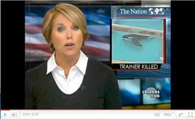 Katie Couric reports on Tilikum's attack, Feb 24, 2010/CBS News, youtube.com