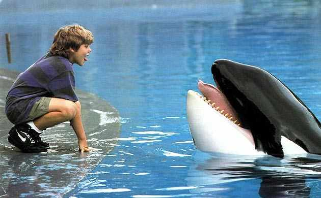 "Jason James Richter & Keiko in scene from ""Free Willy,"" Warner Bros, July 16, 1993/listal.com"