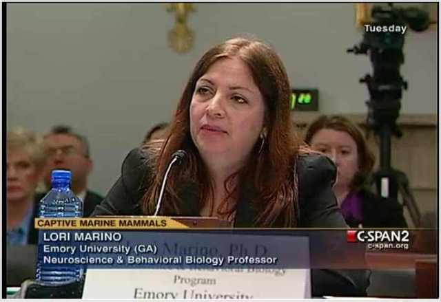Researcher Lori Marino testifies at Natural Resources Committee Hearing, Washington D.C., April 27 2010/c-spanvideo.org