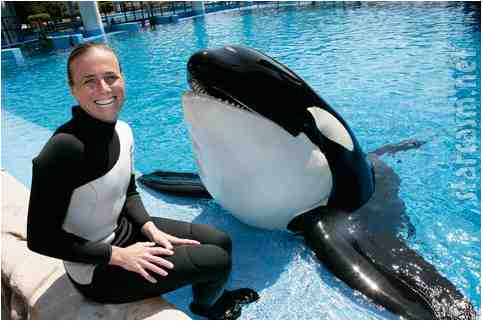 Dawn Brancheau with Nalani, SeaWorld Orlando, undated/Barcroft Media, MailOnline, dailymail.co.uk