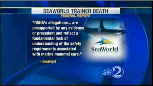 SeaWorld response to OSHA report, Aug 23, 2010/WESH 2 News, youtube.com