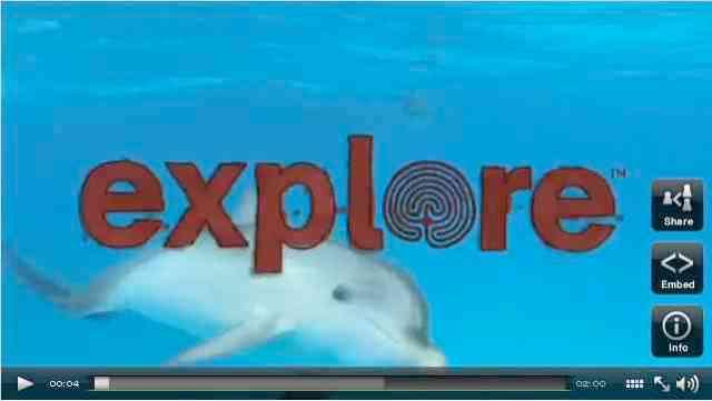 Bahamas Film Library/Explore.org