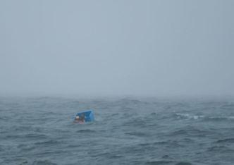 Ryan Harris in blue crate, U.S. Coast Guard rescuer in water near Sitka, Alaska, Sept 9, 2012/Joel Brady-Power, Daily Sitka Sentinel, AP,MailOnline