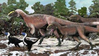 Feathered dinosaur, Yutyrannus