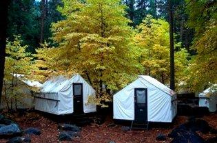 Tent cabins, Yosemite National Park, CA, undated/DNC Parks and Resorts at Yosemite, Inc./AP