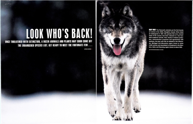 """Look Who's Back!"" Life, January 1999"