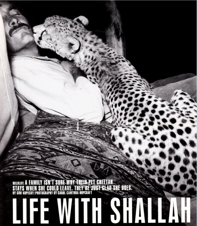 """Life with Shallah"" by Gini Kopecky, photos by Carol Cawthra Hopcraft/Life Magazine, October 1998"