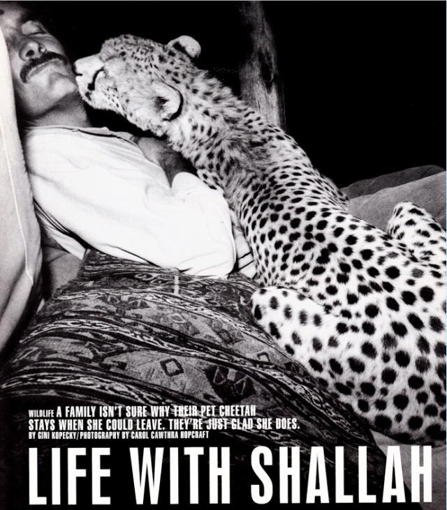 """Life with Shallah"" by Gini Kopecky, photos by Carol Cawthra Hopcraft/Life Magazine, October 1998"