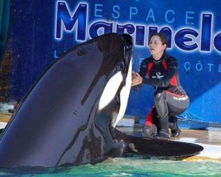 Marion Cotillard & unidentified captive orca, Marineland, Antibes Frances, undated/lemonglass, LucyWho.com