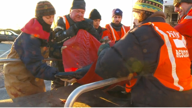 "Rescuers transfer dolphin onto cart for next phase of journey back to sea, Sagamore Beach, MA, Jan 14, 2012/Image from ""IFAW Dolphin Release, Sagamore Beach, MA, Jan 14, 2012,"" IFAW.org, vimeo.com"