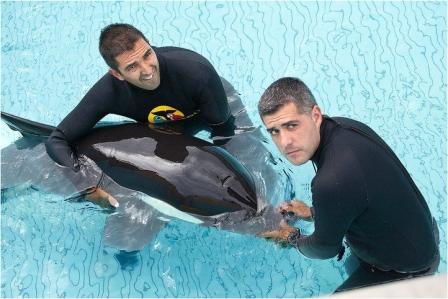 Adan & handlers, Loro Parque, Canary Islands, undated/Loro Parque, orcahome.de