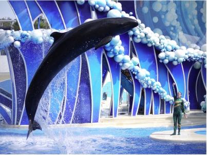 jozu - [Jozu] La fausse orque gravement malade Blue-horizons-jozu-as-jpeg