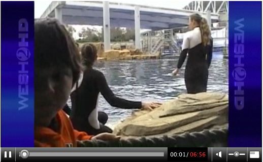 """Dine with Shamu,"" SeaWorld Orlando, Feb 24, 2010/Todd Connell, cfnews13.com"