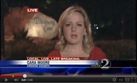 Cara Moore, WESH 2 News, reports on lightning strike at Discovery Cove, Orlando FL, Aug 16, 2011/WESH 2 News, YouTube.com