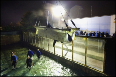 Morgan is hoisted from her tank, Dolfinarium Harderwijk, Netherlands, Nov 29, 2011/Marco Hofste, Dolfinarium, AP, huffingtonpost.com