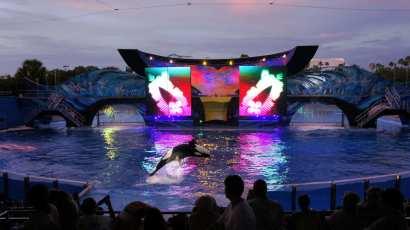 SeaWorld Orlando, June 2011/Orlandoinformer.com