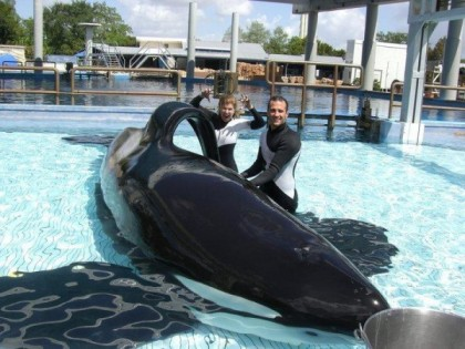 "Tilikum & unidentified trainers, SeaWorld Orlando, undated/ ""Occupy SeaWorld,"" Seattle PI"