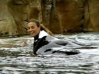 Dawn Brancheau & Tilikum, moments before attack, SeaWorld Orlando, Feb 24, 2011/ Todd Connell, cfnews13.com