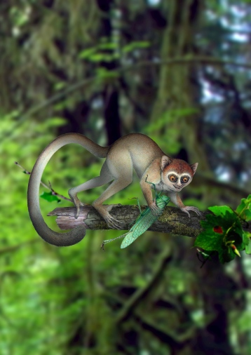 Artist's rendering of Archicebus achilles, based on discovery of near-complete, 55-million-year-old Chinese fossil/Xijun Ni, Nature