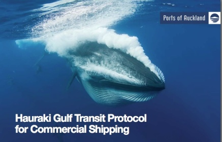 """Bryde's whale, undated/Ports of Aukland """"Hauraki Gulf Transit Protocol for Commercial Shipping,"""" Aukland Council"""