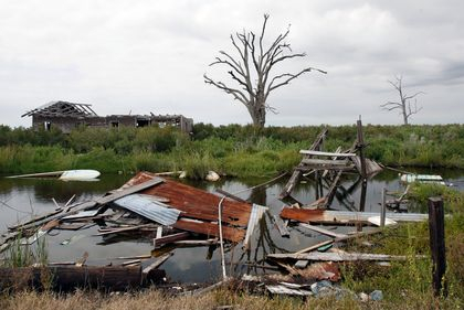 Isle de Jean Charles, Louisiana Bayou, undated/Bill Haber, AP, National Geographic