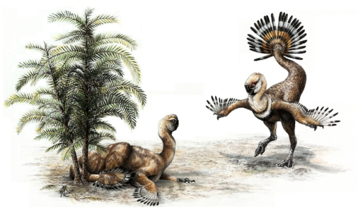 Artist's rendering of male oviraptor displaying feathers during courtship/Sydney Mohr, U. of Alberta, Wired.com