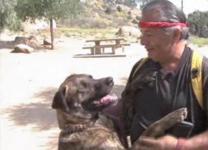 Mole, the lifesaving dog, and owner Ramon Llamas/KABC, New York Daily News