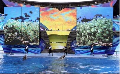 Shamu Stadium, SeaWorld Orlando, Dec 3, Ricardo Ramirez Buxeda, Orlando Sentinel