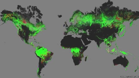 Forest change, 2000-2012 (red=loss)/Google Earth, U. of Maryland, BBC News