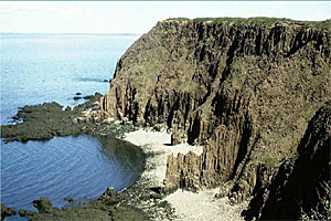 Basalt cliffs formed by volcanic magma, Grand Manan Island, New Brunswick, undated/Greg McHone, CBC News
