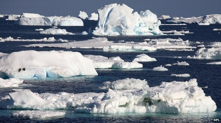 Polar Ice/SPL, BBC News