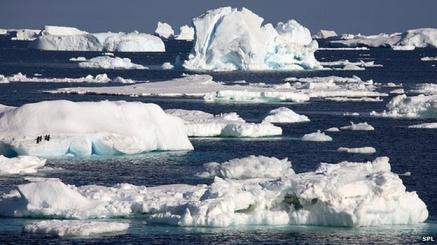 Polar Ice/SPL, BBC News