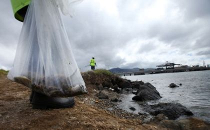 Workers collect dead marine life after massive molasses spill, Keehi Lagoon, Hawaii, Sept 12, 2013/Hugh Gentry, Reuters, National Geographic