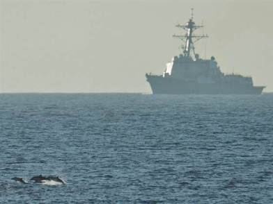 Dolphins and USS Halsey off Southern California, undated/James R. Evans, U.S. Pacific Fleet, NBC News