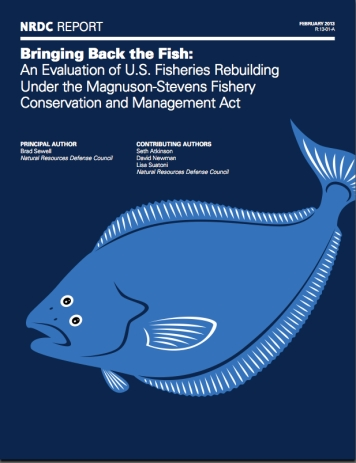 "Cover of NRDC report, ""Bringing Back the Fish,"" Feb 2013/NRDC"
