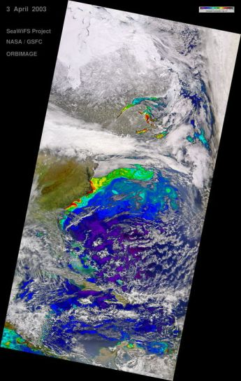 Western North Atlantic, April 3, 2003/SeaWiFS Project, NASA, GSFC ORBIMAGE
