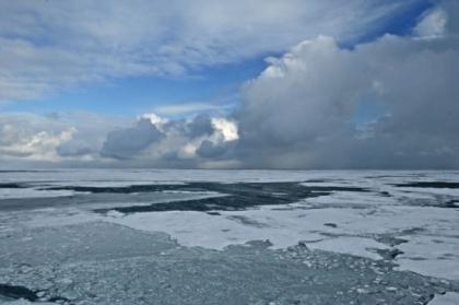 Arctic sea ice, undated/NOAA, Nature World News