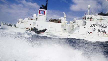 Sea Shepherd activists and Japanese whaling vessel Shonan Maru 2, January 2012/Reuters, The Sydney Morning Herald