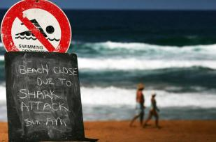 Sign on beach in Sydney Australia after third shark attack in 3 weeks, March 1 2009/Ian Waldie, Getty, New York Daily News