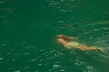Swimmer in summer swimming hole, 2013/Still from video, The New York Times