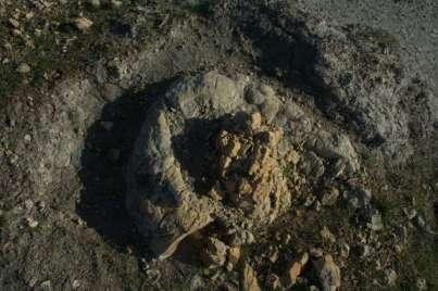 Fossilized ambergris, aka sperm whale poo, southwestern Umbria, Italy, undated/Federico Famiami, LiveScience.com