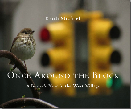 Once Around The Block, A Birder's Year in the West Village by Keith Michael